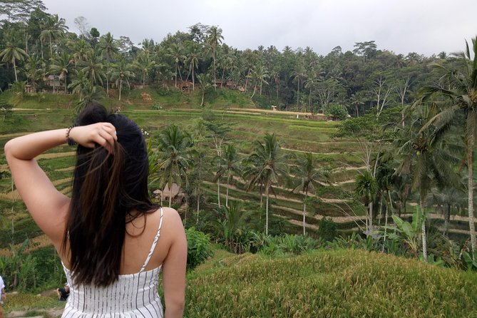 Private inclusive tour: Best of Ubud in a Day