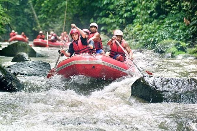 Bali Ayung River Rafting and Ubud Monkey Forest Tour