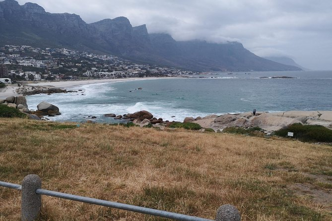Cape of Good Hope Cape Point Penguins Kirstenbosch Day Tour from Franschhoek