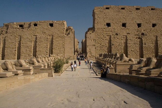 Small Group Day Tour to Luxor from El Gouna photo 11