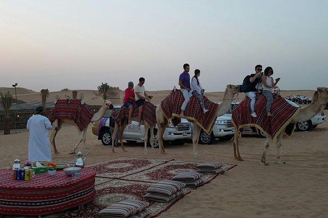 Dubai Camel Caravan with BBQ Dinner Buffet