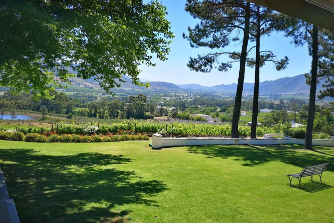 Private Cape Winelands Guided Day Tour from Stellenbosch OR Franschhoek OR Paarl photo 4