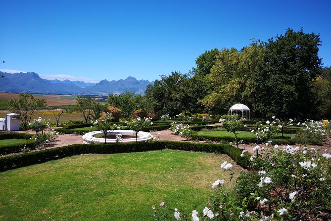 Private Cape Winelands Guided Day Tour from Stellenbosch OR Franschhoek OR Paarl photo 7