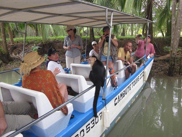 Damas Island Boat tour