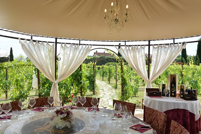 Unforgettable Vineyard Lunch in Tuscany