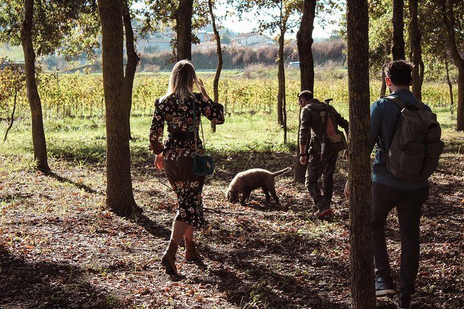 Truffle Hunting Experience with Wine and Lunch in Tuscany