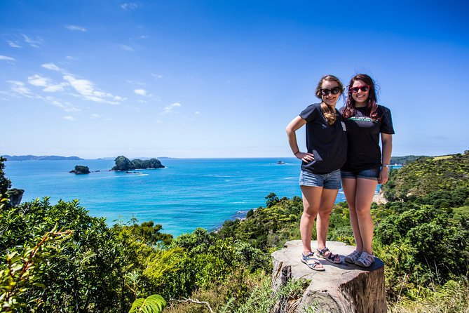 3 Day Bay of Islands Winterless North Tour