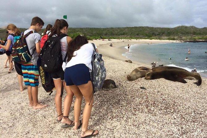 Ecuador & Galapagos Community Service 25 Days