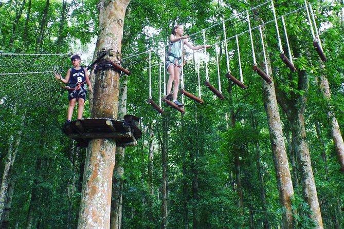 Bali Treetop Adventure Park With Transfers Ubud Indonesia