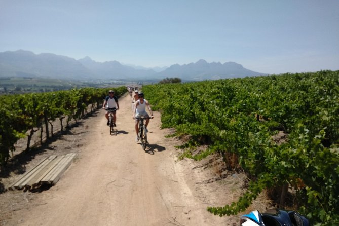 Franschhoek Winelands Luxury Cycle Tour
