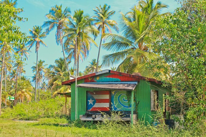 local Puerto Rican shack in nature