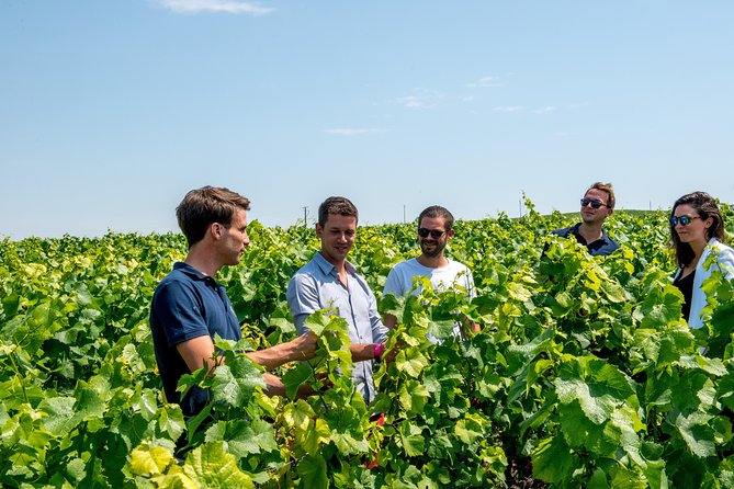 Small-Group Champagne Tour with Champagne Tastings and Lunch from Reims
