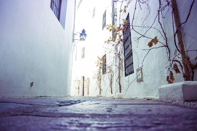 Off the beaten path. Cordoba Patios Tour