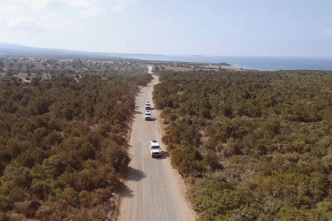 Safari Tour Paphos National Reserve