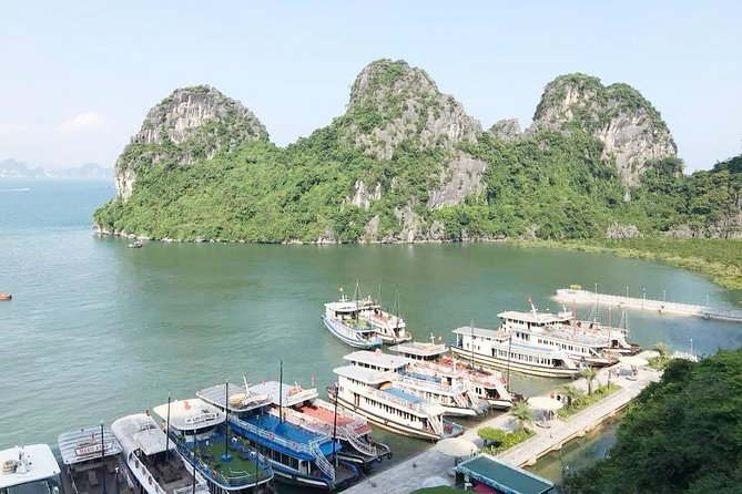 Ha Long Full Day 4-Hour Trip photo 4