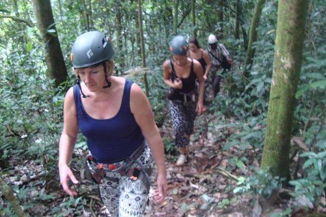 Mt Rwenzori Hiking tour