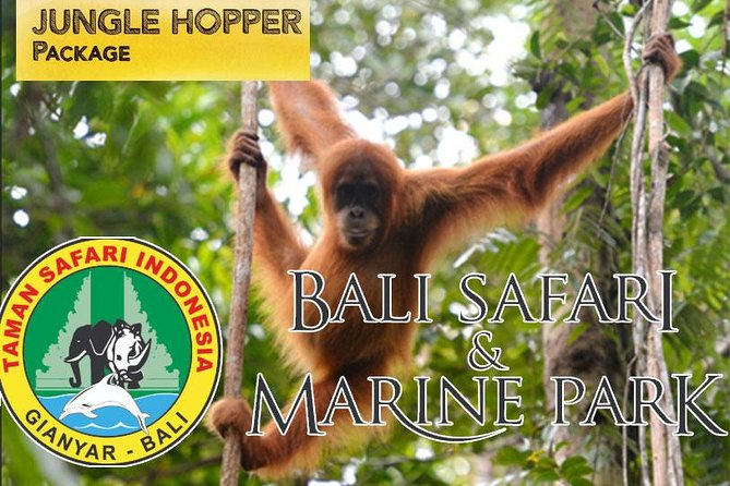 Amazing Private Tours-Bali Safari And Marine Park Jungle Hopper Package