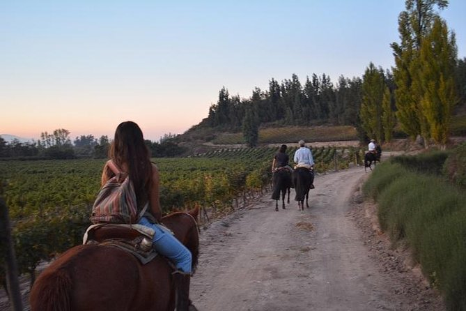 Horseback Private Wine Tour and Country Grill from Santiago