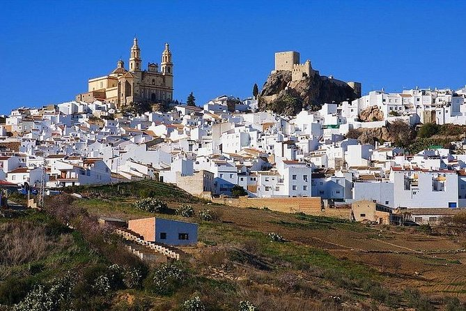 White Villages: Private Guided Day Trip from Seville photo 1