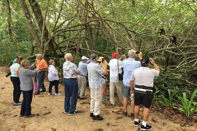Nature History Tour. Tortuguero Canal & Cahuita National Park Shore Excursion