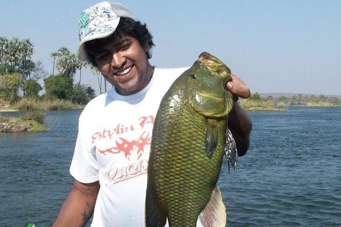 Victoria Falls (upper Zambezi River) Tiger Fishing