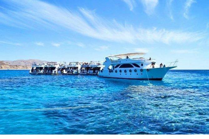 Ras Mohammed Snorkeling, Sharm El Sheikh Area