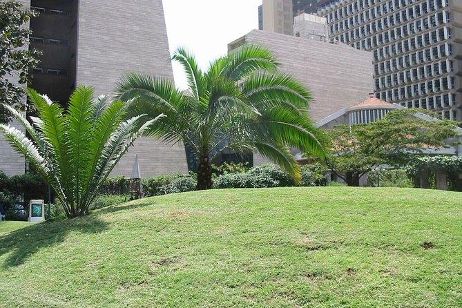 Garden in Nairobi