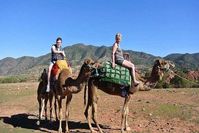 Desert Agafay & Atlas Mountain & Kik Plateau Day Trip From Marrakech