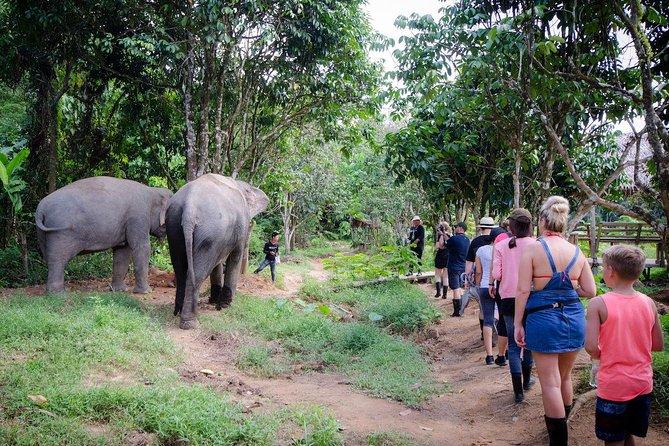 Jungle Sanctuary Tour from Phuket