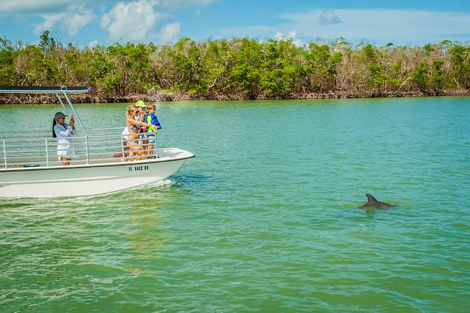 Marco Island Dolphin-Watching Tour photo 1