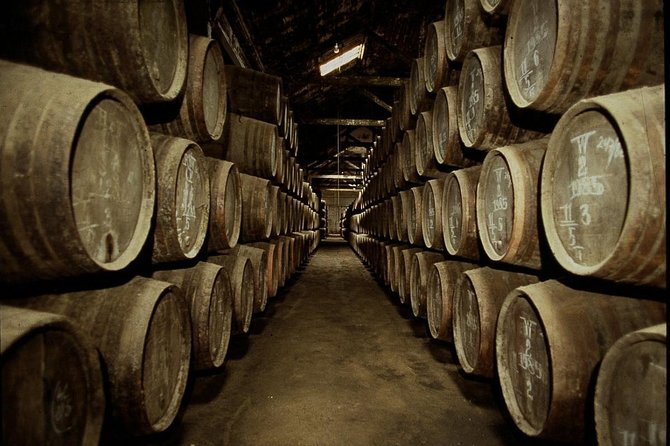 Port Wine Lodges Tour Including 7 Wine Tastings