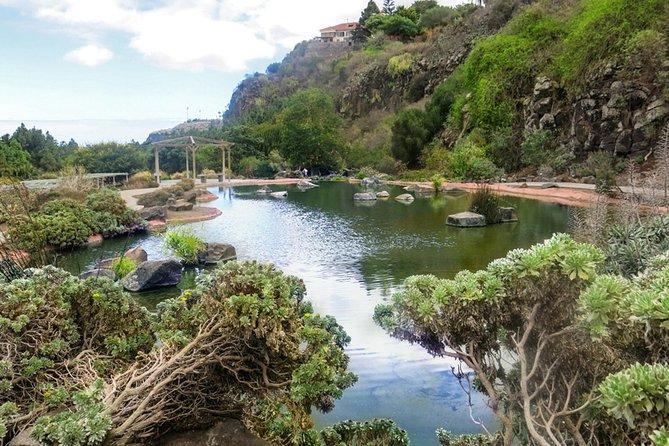 Las Palmas de GC, Crater and Jardín Canario