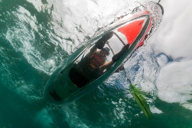 2-hour Tour Clear Kayak in Las Canteras with Snack