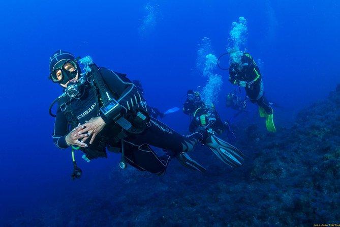 Introductory Scuba Diving Course in La Palma