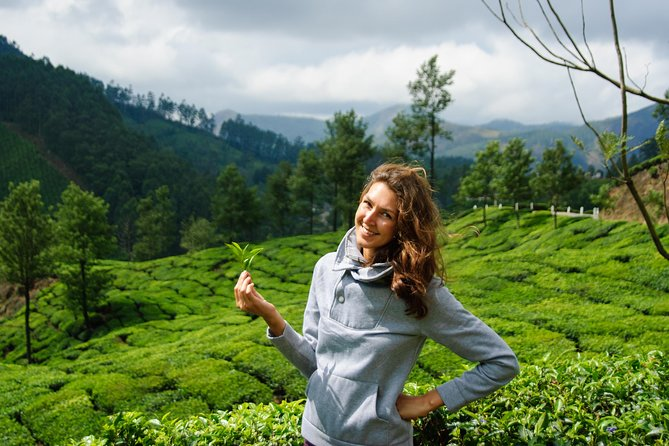 Munnar Tea Tour 03 Days