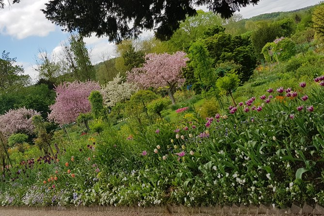 Private day tour to Giverny Gardens and Rouen from Paris photo 4