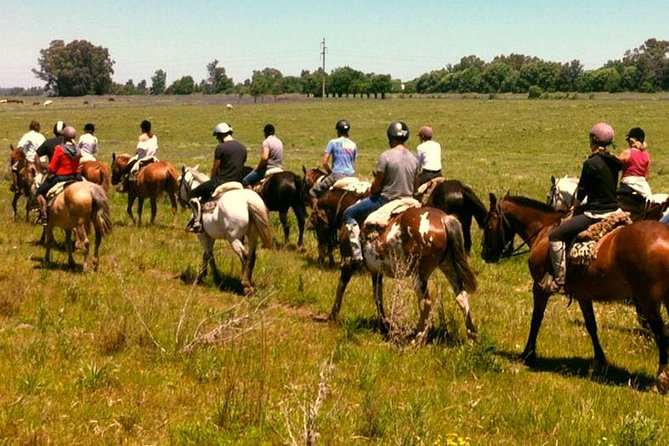 Horseback Riding And Countryside Day