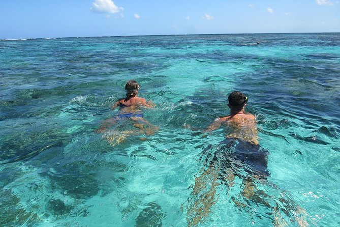 Snorkeling in the Lagoon and around the Islets in Guadeloupe