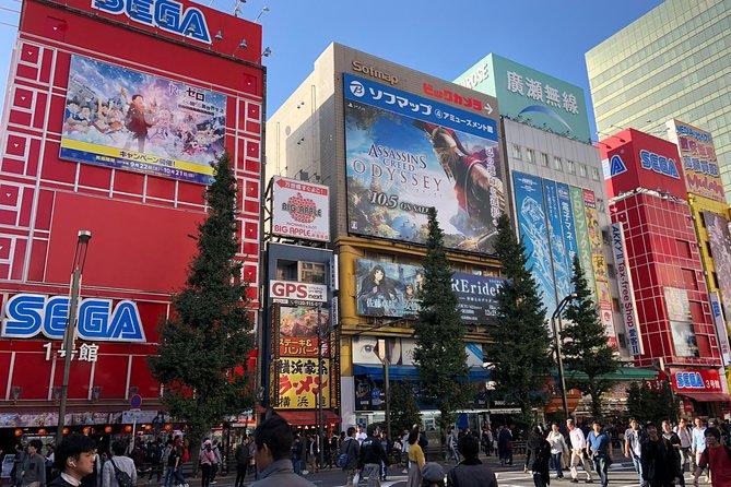 Private Experience Akihabara Electric Town: Karaoke, Anime and Otaku Culture