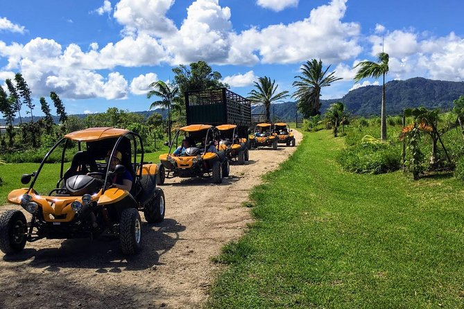 Port Vila Shore Excursion - Buggy Adventure Safari Vanuatu