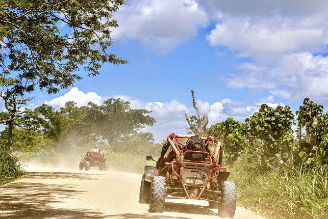 Port Vila Shore Excursion - Buggy Adventure Safari Vanuatu