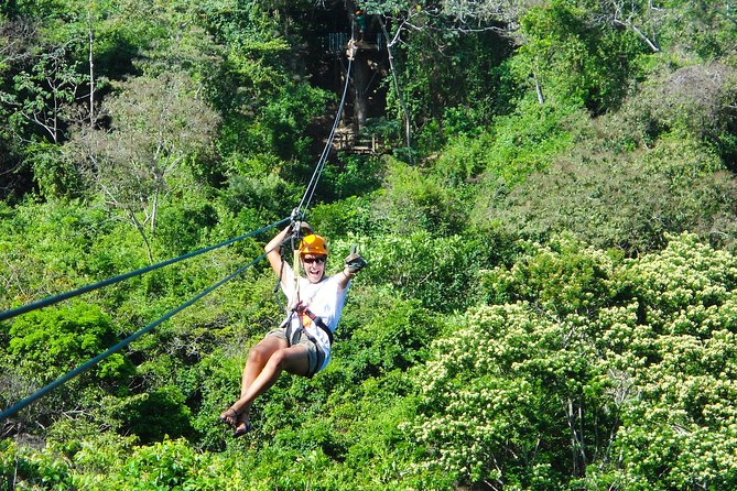 Transfers, Zip Line and Monkey Park photo 1