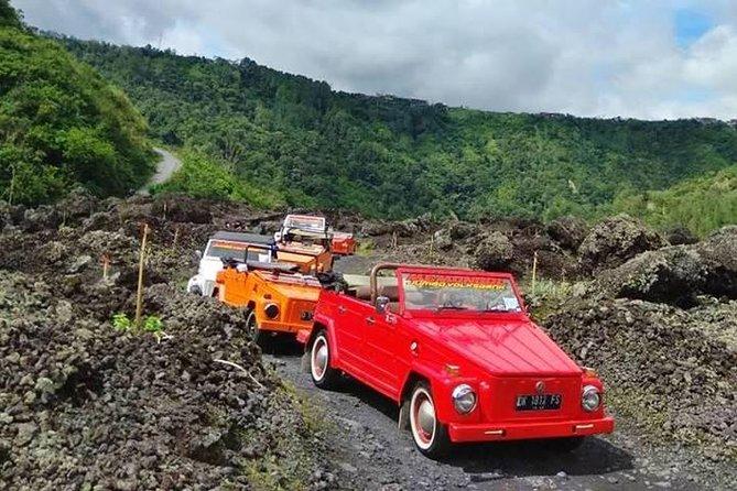 Bali Volkswagen Safari Kintamani Volcano Tour