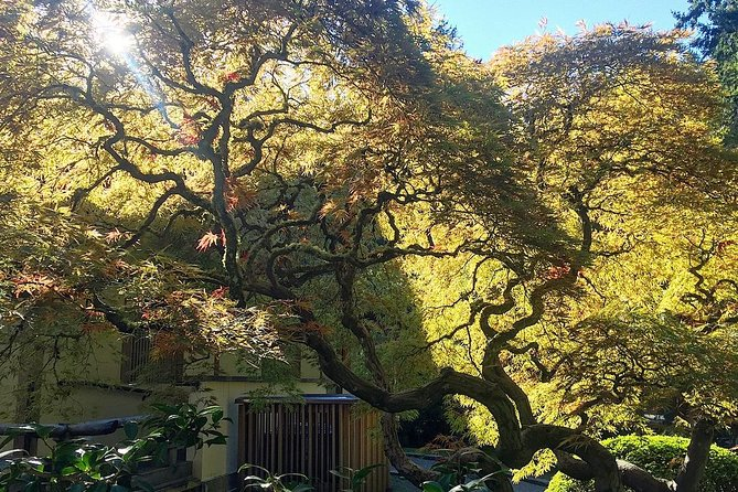 Portland Meditative Garden Tour: Japanese and Chinese Gardens