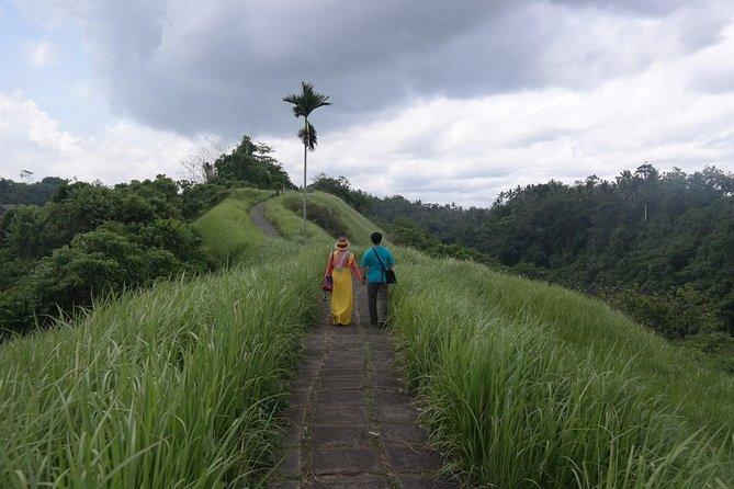 Ubud Experience