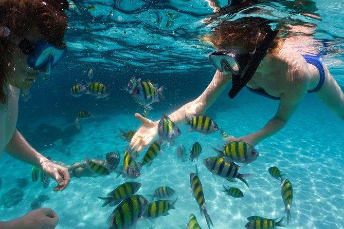 Puerto Plata Snorkeling Tour