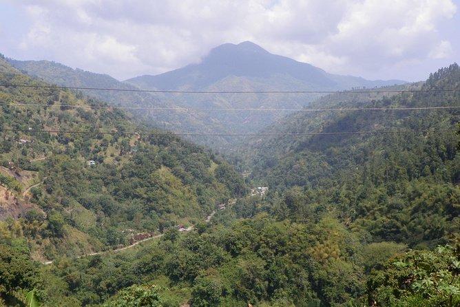 Excursão de Montanha Azul Privada