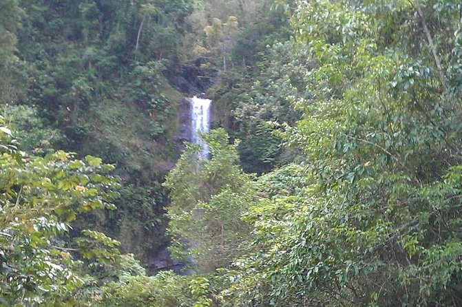 Water falls in the mountains