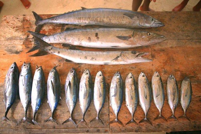 Excursión de pesca en Cartagena