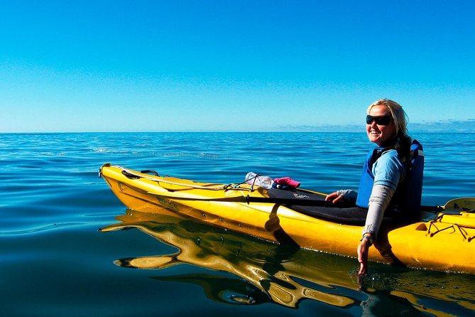 Full-Day Astrolabe Kayaking Eco-Tour